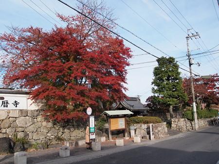 坂本駅前の紅葉