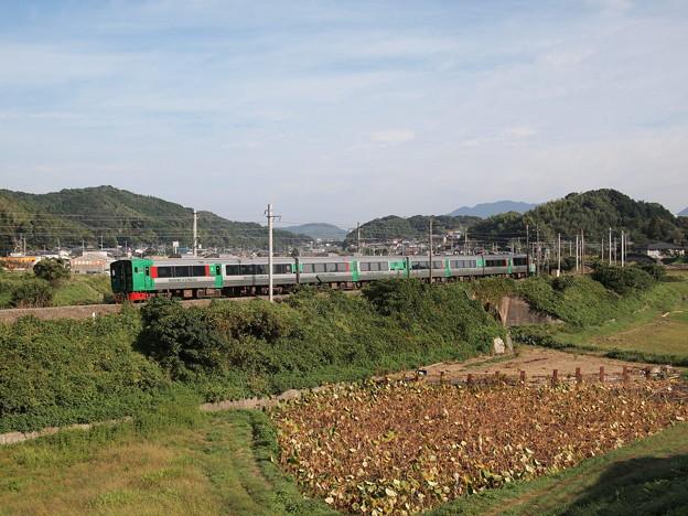 783系特急きらめき 鹿児島本線東郷~東福間