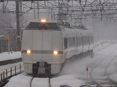 683系特急しらさぎ 北陸本線新疋田駅
