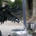 Photos: 龍の水