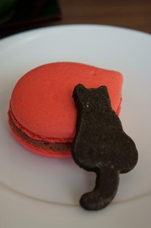 マカロン&ネコ型クッキー