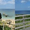 写真: 沖縄暑い