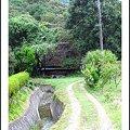 Photos: 里の小道と茅葺