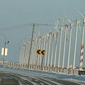Photos: オトンルイの風車