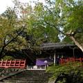 Photos: 高鴨神社04
