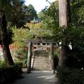 Photos: 高鴨神社01