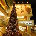Photos: ☆イルミ35th 横浜元町☆