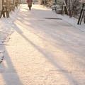 初雪の朝 02