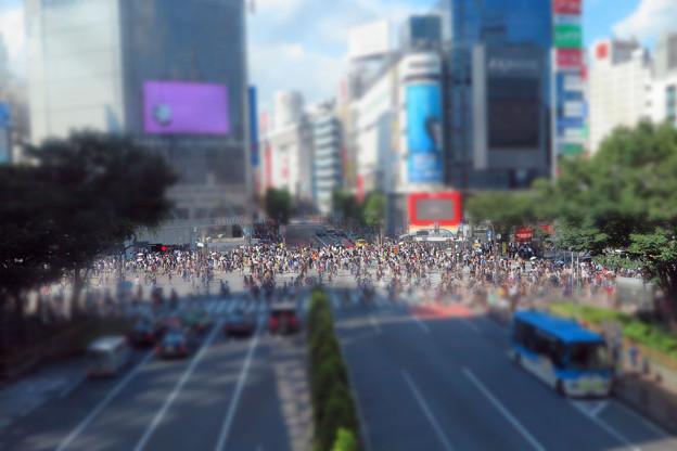 渋谷スクランブル交差点II