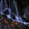 渓流の秋2