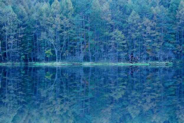 Photos: 「緑響く」東山魁