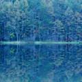 写真: 「緑響く」東山魁