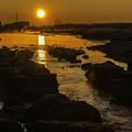 日の出「多摩川」