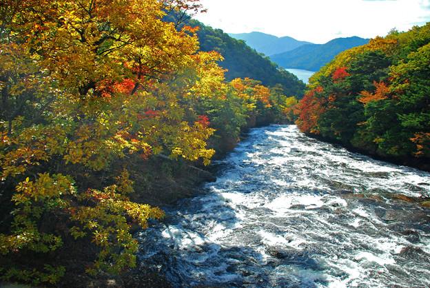 Photos: 竜頭の滝上流