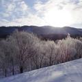 写真: kamui