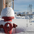 Photos: 2011_nenga_blog