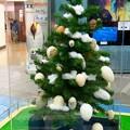 写真: 20141213 多摩 たまごツリー