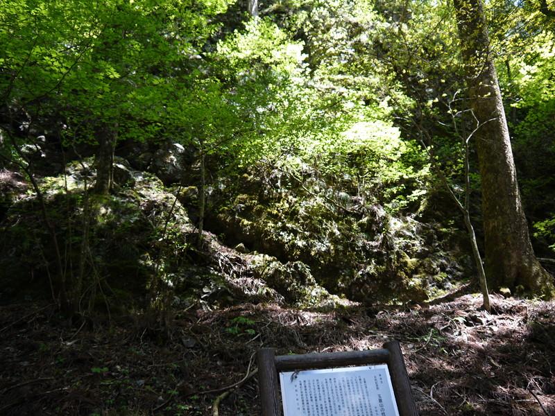 玉置山の枕状熔岩