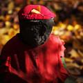 写真: 秋の陽に佇む