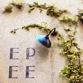 Photos: EPEE