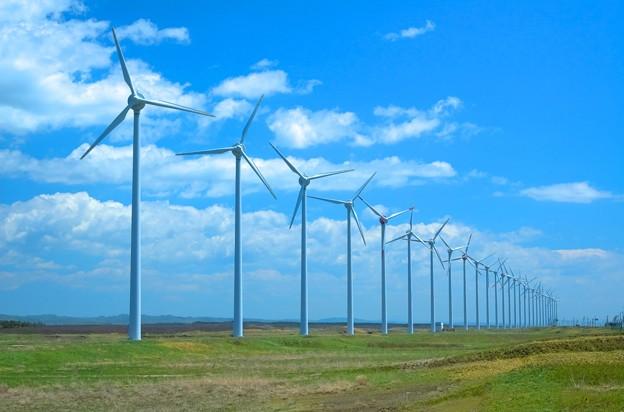 写真: オトンルイ風力発電所45