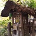 写真: 黒川温泉にて(4)
