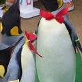 20150103 長崎ペンギン水族館 30