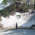 Photos: 小国町付近の道路脇