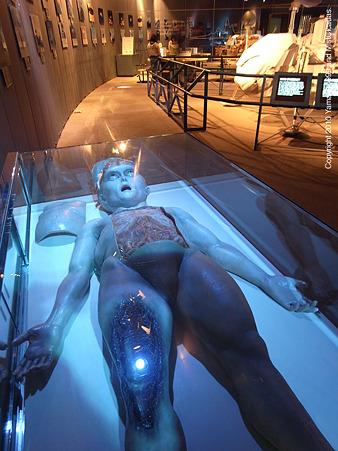 ロズウェル事件の宇宙人、の模型