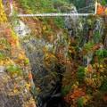 Photos: 吊橋の谷
