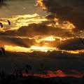 吉野山の夕焼け1