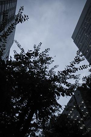 2010-10-21の空