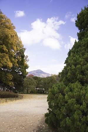 2010-11-23の空