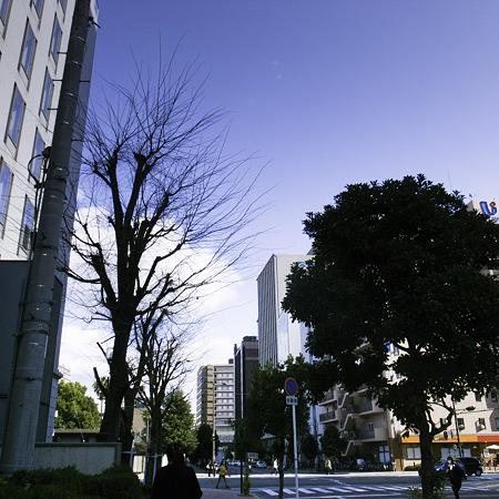 2011-01-28の空
