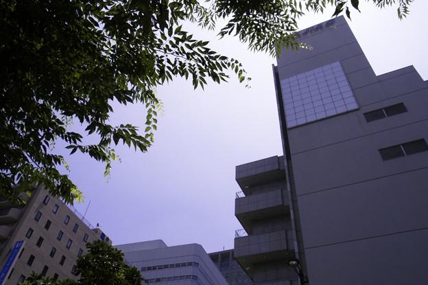 Photos: 2011-07-05の空