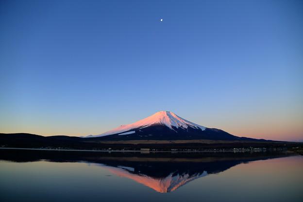 Photos: 逆さ富士・薄赤富士(山中湖)