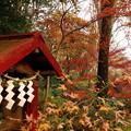 写真: 震生湖のお地蔵様