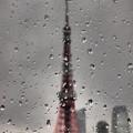 Photos: 雨粒模様(3)