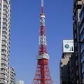 再び「主役」は東京タワー