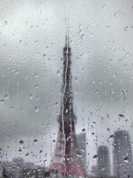 Photos: 雨粒模様(4)