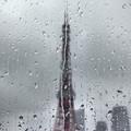 写真: 雨粒模様(4)