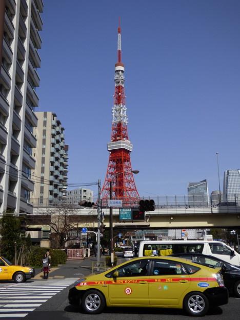 青空にそびえる東京タワーを背景に…