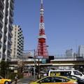 写真: 青空にそびえる東京タワーを背景に…