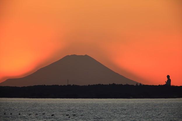 霞ヶ浦富士夕景1