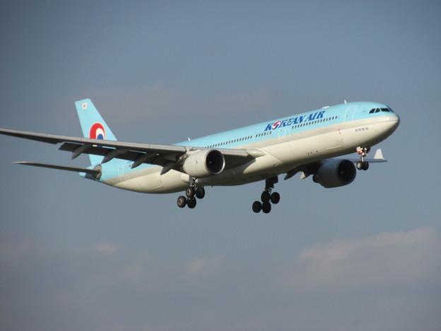 A330300HL7710成田141030