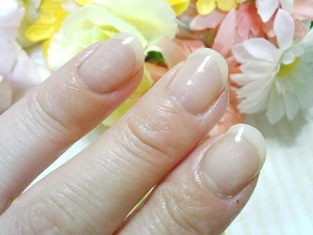 ニッピコラーゲン化粧品 ナチュラル モイスチュア オイル (18)