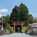写真: 河口浅間神社・鳥居