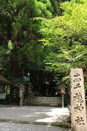 高千穂神社・参道2