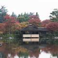 【昭和記念公園:日本庭園の清池軒】2