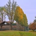 ジョンソン基地跡公園